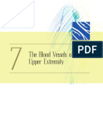 07. BLOOD VESSELS OF THE UPPER EXTREMITIES.pdf