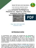 Caracterización de Phaseolus y Zea