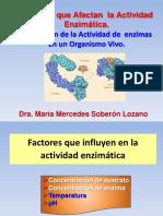 Factores Que Afectan Actividad Enzimatica Regulacion Enzimatica
