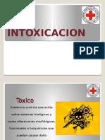 Intoxicacion 2012