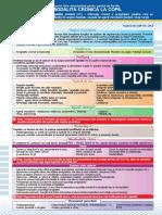 amigdal cronica.pdf