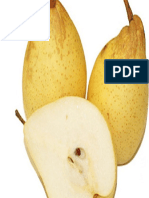 Chinese Pear