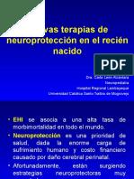 Nuevas Terapias de Neuroprotección en El Recién Nacido HRL