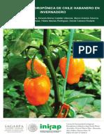 chile-hanadero-guia.pdf