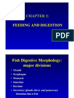 Chapter 2_Feeding and Digestion