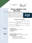 Curriculo Vitae Polo Campos Luis William