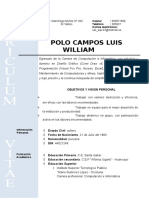 Curriculo Vitae Polo Campos Luis William