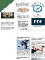 Brochure Psicologia
