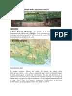 Bosque Nebuloso Montecristo