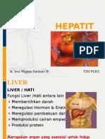 Persentasi Hepatitis