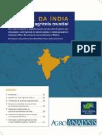 o Papel Da India