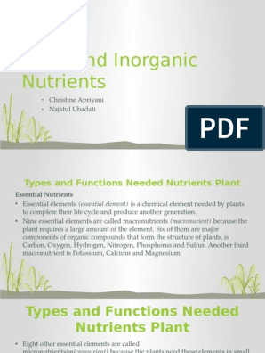 Unit 4 Plant And Inorganic Nutrients Plant Nutrition Nutrients