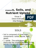 Unit 3 Roots, Soils, And Nutrient Uptake