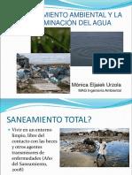 Contaminación del agua y Planes de Saneamiento 2016.pdf