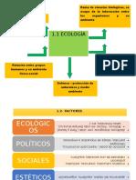 1 Educacion Ambiental Mapas