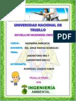 INFORME LABORATORIO 7 .pdf