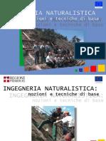 manuale_ingegneria_nat.pdf