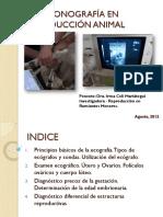 Ultrasonografía en Reproducción Animal_para Modulo_agosto2012