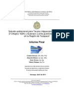 Estudio poblacional de Taruka y Guanaco en Tarapaca.