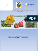 El Tomate de Arbol