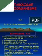 3. Metabolisme Sel - Unimal