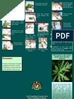 Brochure Daun Betik to Hospitals 110215