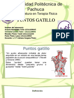 Puntos Gatillo- Grupo 60269