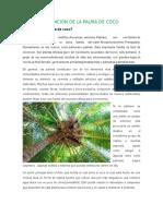 plantas en peligro.docx