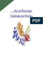 Cinetica de reacciones Catalizadas por Enzimas.pdf