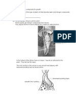 Plant_1.pdf