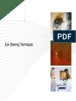 Eye Steering 2009
