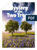 Mystery of the Two Trees