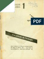realidade brasileira.pdf