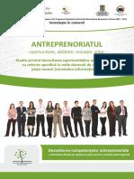ANTREPRENORIAT - STUDIU.pdf