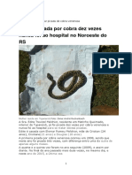 Para Curar Picada de Cobra Venenosa