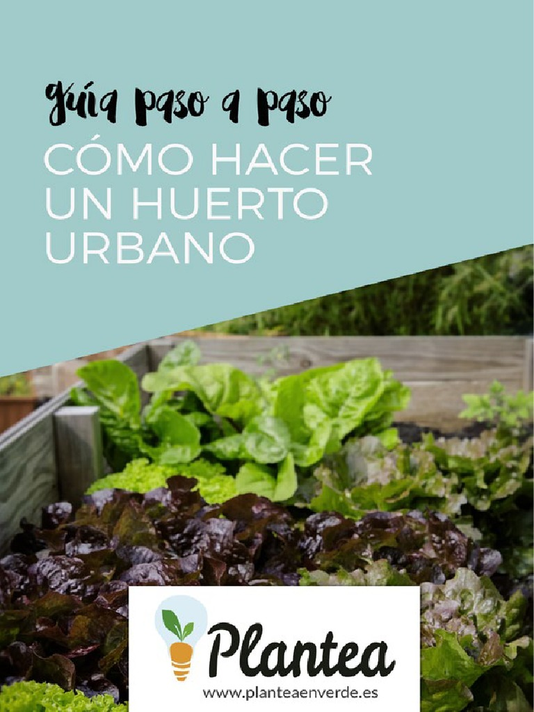 C mo hacer un huerto urbano en casa 1 - Como hacer un huerto urbano ...