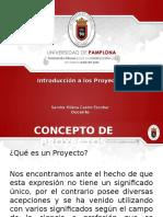 Capitulo 1. Introducción a Los Proyectos
