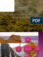seminario_phaeophytas.ppt