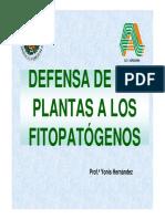 Defensa de Plantas 2010