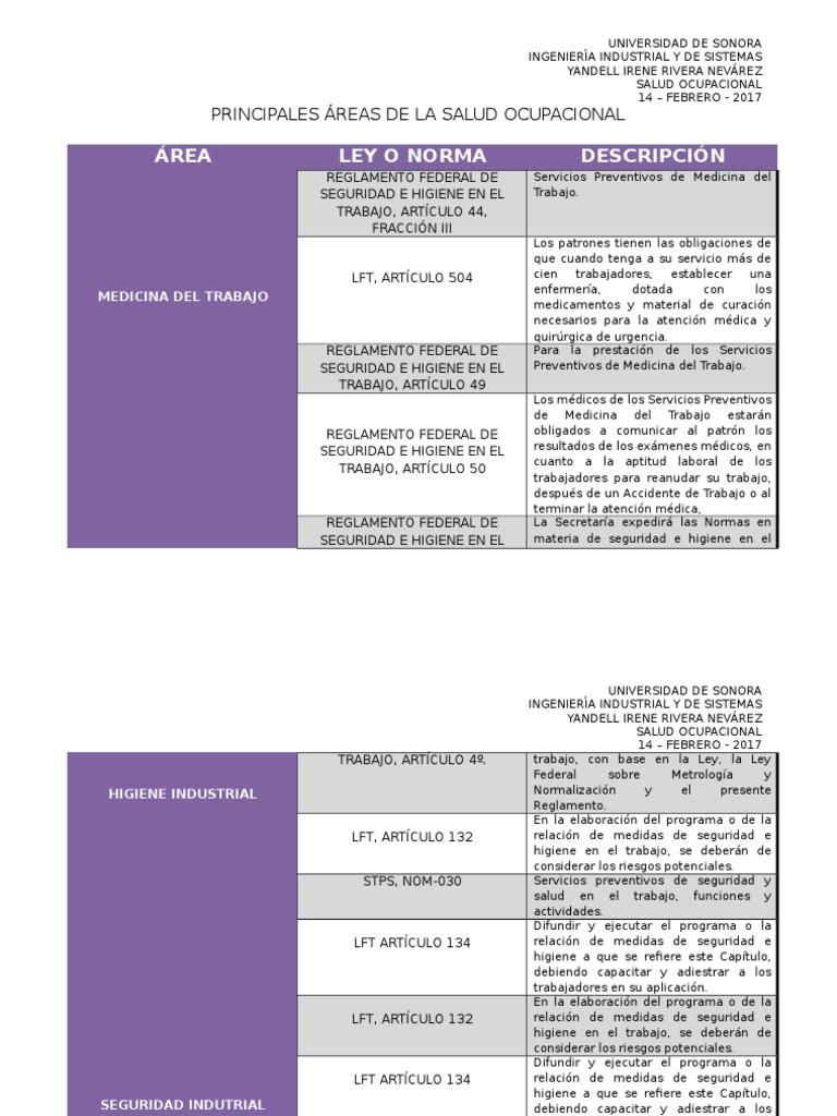 Principales Áreas de La Salud Ocupacional