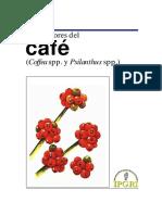 Descriptores Del Café Coffea Spp. y Psilanthus Spp. 487(2)