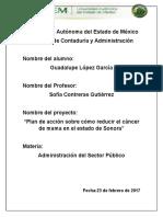 plan de accion contra el cancer de mama en Sonora