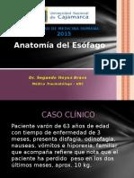 Anatomía del Esófago 2015.pptx