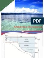 Ambientes Sedimentarios-plat Marina