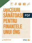 Ghid-Obiceiuri-Sanatoase-pentru-Finantele-unui-ONG.pdf