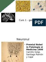 Introducere in Neurologie
