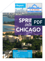 spring into chicago final report