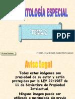 TEMAFE2P99W
