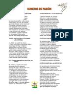 SONETO DE PASIÓN.doc