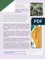 Noticias 2013819151824
